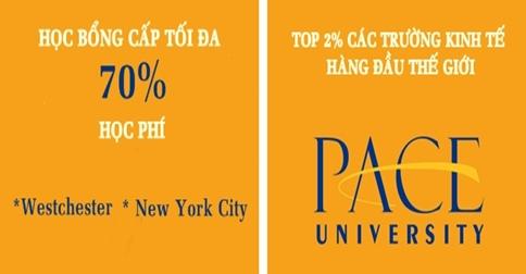 PACE UNIVERSITY, USA - Top 2% các trường kinh tế hàng đầu thế giới