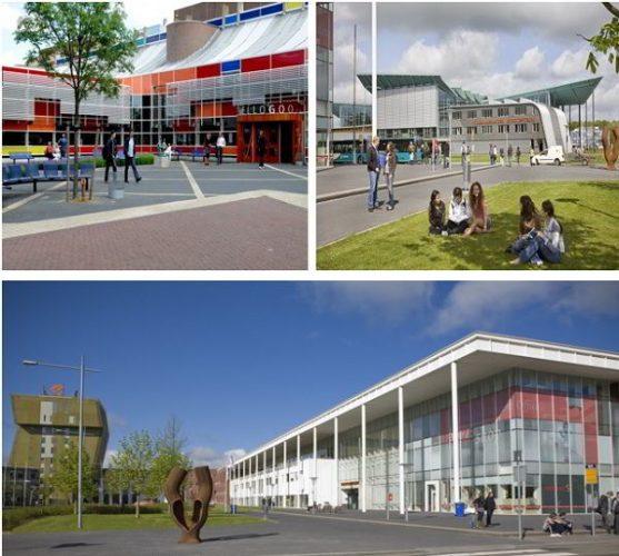 Tỷ lệ đỗ visa 100% , không chứng minh tài chính cùng Đại học Hanze - Hà Lan